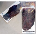 Whiting American Hen Cape and Saddle BLW-Clare